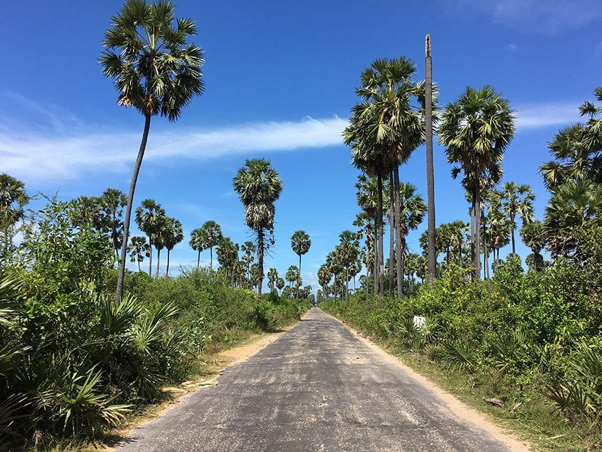 Fun Things to See, Eat and Do in Sri Lanka - Visit Jaffna