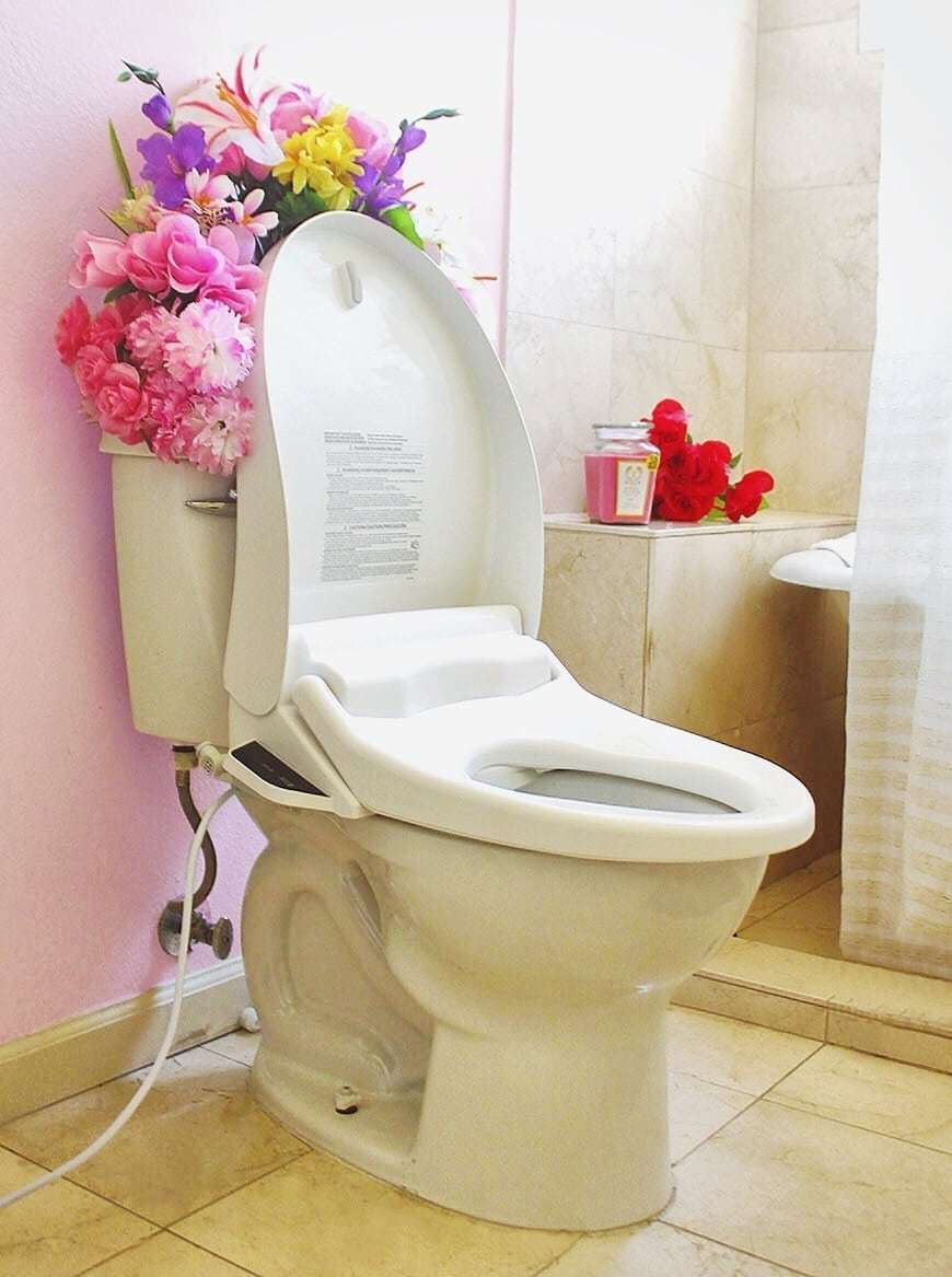 Surprising The Best Heated Toilet Seat With The Cleaning Water Spray Alphanode Cool Chair Designs And Ideas Alphanodeonline