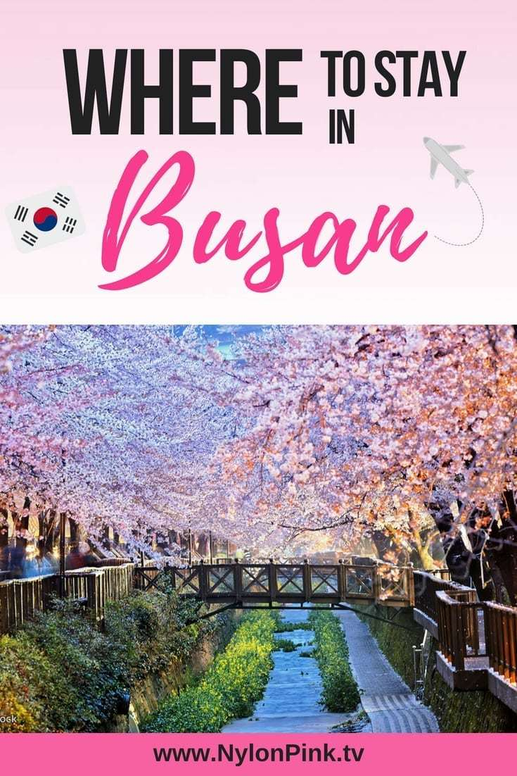 PLANNING A TRIP TO BUSAN? YOU'RE GONNA WANT TO READ THIS! Finally, you've booked your dream vacation in the beautiful city of Busan, South Korea. Smart move! Check out the best places to stay in Busan! #busan #korea #southkorea #travel #traveliternary #koreratravel