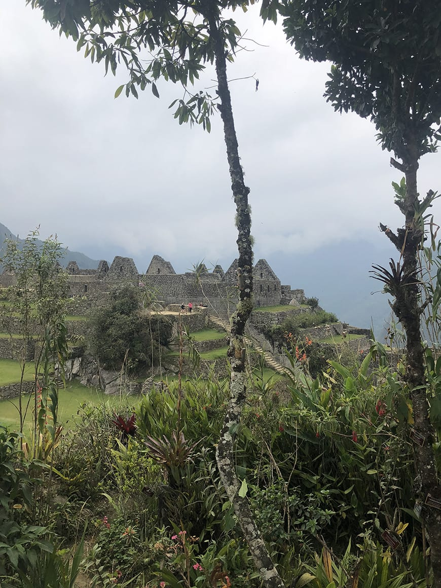 Planning a trip to machu picchu- 2 days 1 night tour from Cusco scenic